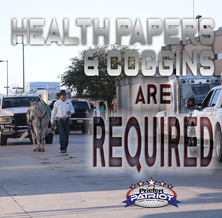 healthandcoggins